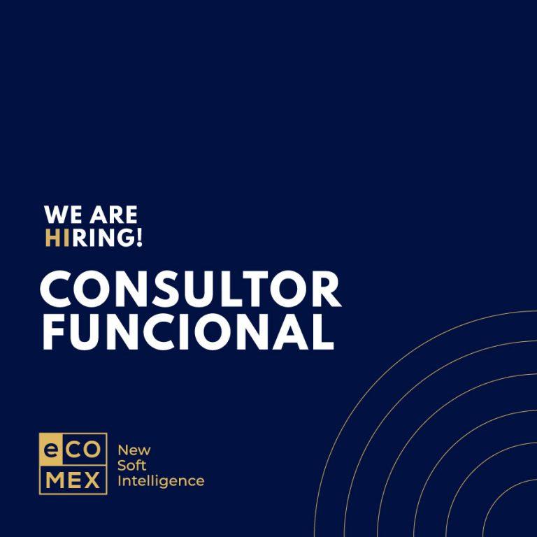 Consultor Funcional