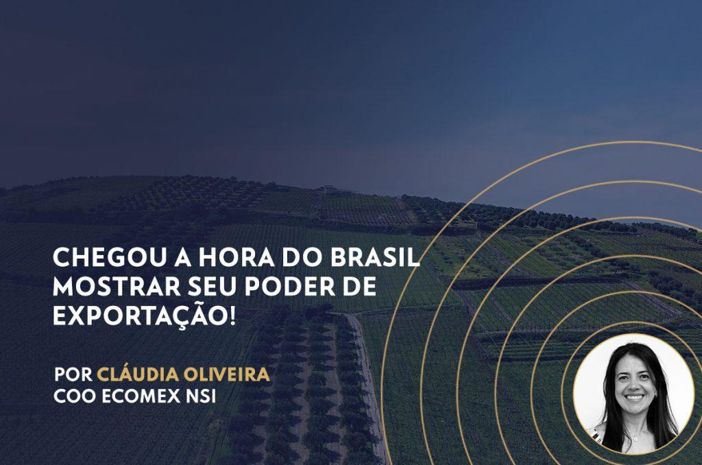 Chegou a hora do Brasil mostrar seu poder de exportação!