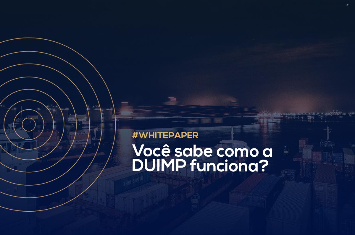 Você sabe como a DUIMP funciona?